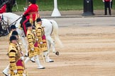 Trooping the Colour 2016. Horse Guards Parade, Westminster, London SW1A, London, United Kingdom, on 11 June 2016 at 11:33, image #608