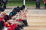 Trooping the Colour 2016. Horse Guards Parade, Westminster, London SW1A, London, United Kingdom, on 11 June 2016 at 11:33, image #609