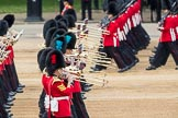 Trooping the Colour 2016. Horse Guards Parade, Westminster, London SW1A, London, United Kingdom, on 11 June 2016 at 11:33, image #610