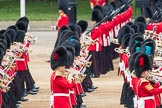 Trooping the Colour 2016. Horse Guards Parade, Westminster, London SW1A, London, United Kingdom, on 11 June 2016 at 11:33, image #611