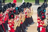 Trooping the Colour 2016. Horse Guards Parade, Westminster, London SW1A, London, United Kingdom, on 11 June 2016 at 11:33, image #613