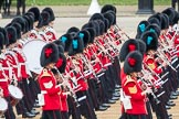 Trooping the Colour 2016. Horse Guards Parade, Westminster, London SW1A, London, United Kingdom, on 11 June 2016 at 11:33, image #614
