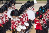 Trooping the Colour 2016. Horse Guards Parade, Westminster, London SW1A, London, United Kingdom, on 11 June 2016 at 11:33, image #615