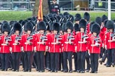 Trooping the Colour 2016. Horse Guards Parade, Westminster, London SW1A, London, United Kingdom, on 11 June 2016 at 11:33, image #616