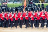Trooping the Colour 2016. Horse Guards Parade, Westminster, London SW1A, London, United Kingdom, on 11 June 2016 at 11:33, image #617