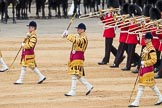 Trooping the Colour 2016. Horse Guards Parade, Westminster, London SW1A, London, United Kingdom, on 11 June 2016 at 11:35, image #622
