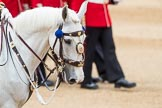 Trooping the Colour 2016. Horse Guards Parade, Westminster, London SW1A, London, United Kingdom, on 11 June 2016 at 11:35, image #630