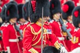Trooping the Colour 2016. Horse Guards Parade, Westminster, London SW1A, London, United Kingdom, on 11 June 2016 at 11:35, image #631
