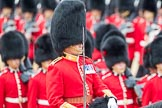Trooping the Colour 2016. Horse Guards Parade, Westminster, London SW1A, London, United Kingdom, on 11 June 2016 at 11:36, image #632