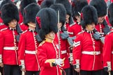 Trooping the Colour 2016. Horse Guards Parade, Westminster, London SW1A, London, United Kingdom, on 11 June 2016 at 11:36, image #633