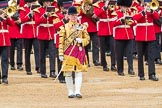 Trooping the Colour 2016. Horse Guards Parade, Westminster, London SW1A, London, United Kingdom, on 11 June 2016 at 11:36, image #635