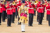 Trooping the Colour 2016. Horse Guards Parade, Westminster, London SW1A, London, United Kingdom, on 11 June 2016 at 11:36, image #636