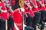 Trooping the Colour 2016. Horse Guards Parade, Westminster, London SW1A, London, United Kingdom, on 11 June 2016 at 11:36, image #638