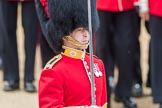 Trooping the Colour 2016. Horse Guards Parade, Westminster, London SW1A, London, United Kingdom, on 11 June 2016 at 11:36, image #640