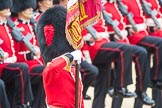 Trooping the Colour 2016. Horse Guards Parade, Westminster, London SW1A, London, United Kingdom, on 11 June 2016 at 11:37, image #641