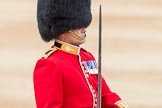 Trooping the Colour 2016. Horse Guards Parade, Westminster, London SW1A, London, United Kingdom, on 11 June 2016 at 11:37, image #642