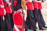 Trooping the Colour 2016. Horse Guards Parade, Westminster, London SW1A, London, United Kingdom, on 11 June 2016 at 11:37, image #643