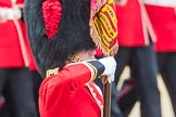 Trooping the Colour 2016. Horse Guards Parade, Westminster, London SW1A, London, United Kingdom, on 11 June 2016 at 11:37, image #644