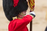 Trooping the Colour 2016. Horse Guards Parade, Westminster, London SW1A, London, United Kingdom, on 11 June 2016 at 11:37, image #645