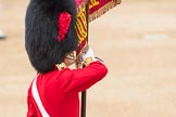 Trooping the Colour 2016. Horse Guards Parade, Westminster, London SW1A, London, United Kingdom, on 11 June 2016 at 11:37, image #646