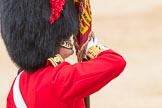 Trooping the Colour 2016. Horse Guards Parade, Westminster, London SW1A, London, United Kingdom, on 11 June 2016 at 11:37, image #647