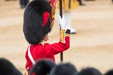 Trooping the Colour 2016. Horse Guards Parade, Westminster, London SW1A, London, United Kingdom, on 11 June 2016 at 11:37, image #648