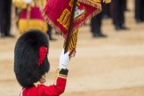 Trooping the Colour 2016. Horse Guards Parade, Westminster, London SW1A, London, United Kingdom, on 11 June 2016 at 11:37, image #649