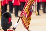 Trooping the Colour 2016. Horse Guards Parade, Westminster, London SW1A, London, United Kingdom, on 11 June 2016 at 11:37, image #650