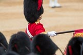 Trooping the Colour 2016. Horse Guards Parade, Westminster, London SW1A, London, United Kingdom, on 11 June 2016 at 11:37, image #652