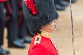 Trooping the Colour 2016. Horse Guards Parade, Westminster, London SW1A, London, United Kingdom, on 11 June 2016 at 11:38, image #654