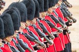 Trooping the Colour 2016. Horse Guards Parade, Westminster, London SW1A, London, United Kingdom, on 11 June 2016 at 11:38, image #655
