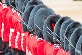 Trooping the Colour 2016. Horse Guards Parade, Westminster, London SW1A, London, United Kingdom, on 11 June 2016 at 11:38, image #658