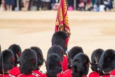 Trooping the Colour 2016. Horse Guards Parade, Westminster, London SW1A, London, United Kingdom, on 11 June 2016 at 11:38, image #660
