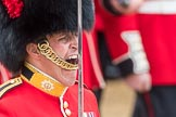Trooping the Colour 2016. Horse Guards Parade, Westminster, London SW1A, London, United Kingdom, on 11 June 2016 at 11:38, image #663