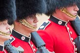 Trooping the Colour 2016. Horse Guards Parade, Westminster, London SW1A, London, United Kingdom, on 11 June 2016 at 11:38, image #664