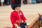 Trooping the Colour 2016. Horse Guards Parade, Westminster, London SW1A, London, United Kingdom, on 11 June 2016 at 11:39, image #672