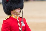 Trooping the Colour 2016. Horse Guards Parade, Westminster, London SW1A, London, United Kingdom, on 11 June 2016 at 11:39, image #673
