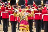 Trooping the Colour 2016. Horse Guards Parade, Westminster, London SW1A, London, United Kingdom, on 11 June 2016 at 11:40, image #674