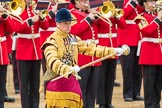 Trooping the Colour 2016. Horse Guards Parade, Westminster, London SW1A, London, United Kingdom, on 11 June 2016 at 11:40, image #676