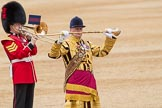Trooping the Colour 2016. Horse Guards Parade, Westminster, London SW1A, London, United Kingdom, on 11 June 2016 at 11:40, image #678