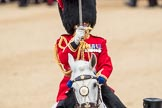 Trooping the Colour 2016. Horse Guards Parade, Westminster, London SW1A, London, United Kingdom, on 11 June 2016 at 11:41, image #685