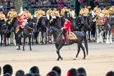Trooping the Colour 2016. Horse Guards Parade, Westminster, London SW1A, London, United Kingdom, on 11 June 2016 at 11:42, image #686