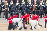 Trooping the Colour 2016. Horse Guards Parade, Westminster, London SW1A, London, United Kingdom, on 11 June 2016 at 11:44, image #690