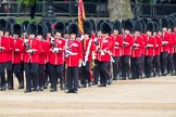 Trooping the Colour 2016. Horse Guards Parade, Westminster, London SW1A, London, United Kingdom, on 11 June 2016 at 11:44, image #691