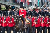 Trooping the Colour 2016. Horse Guards Parade, Westminster, London SW1A, London, United Kingdom, on 11 June 2016 at 11:45, image #695