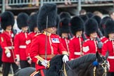 Trooping the Colour 2016. Horse Guards Parade, Westminster, London SW1A, London, United Kingdom, on 11 June 2016 at 11:45, image #698