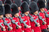 Trooping the Colour 2016. Horse Guards Parade, Westminster, London SW1A, London, United Kingdom, on 11 June 2016 at 11:46, image #699