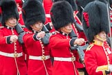 Trooping the Colour 2016. Horse Guards Parade, Westminster, London SW1A, London, United Kingdom, on 11 June 2016 at 11:46, image #700