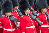 Trooping the Colour 2016. Horse Guards Parade, Westminster, London SW1A, London, United Kingdom, on 11 June 2016 at 11:46, image #702