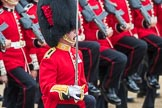 Trooping the Colour 2016. Horse Guards Parade, Westminster, London SW1A, London, United Kingdom, on 11 June 2016 at 11:46, image #703